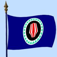 DRAPEAU Bougainville
