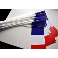 DRAPEAUX FRANCE - PAPIER 12X24CM