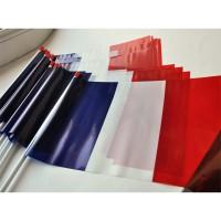 DRAPEAU FRANCE PLASTIQUE 20x30cm sachet de 10 ex
