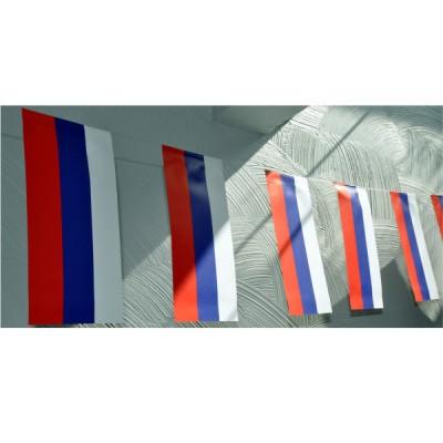 GUIRLANDE FRANCE 5M PAPIER - 20 pavillons 12x24cm