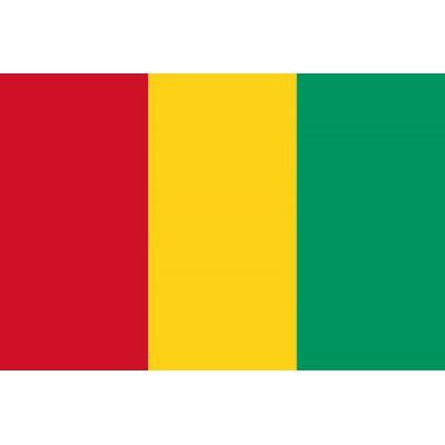 PAVILLON Guinée