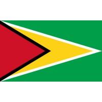 PAVILLON Guyana