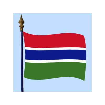 DRAPEAU Gambie